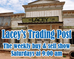 Laceys Trading Post on Lake 88